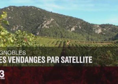 Des vendanges par satellite