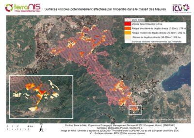 Incidence des incendies de forêt sur la vigne et recommandations de bonnes pratiques